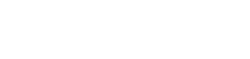 Logo Renauer IT-Solutions